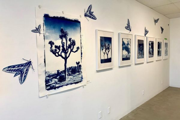 Rose Cefalu Photography for palm springs public arts commission 4